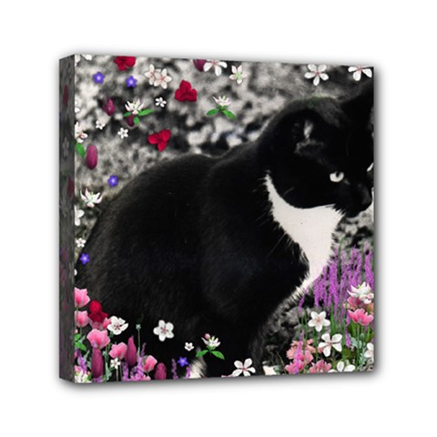 Freckles In Flowers Ii, Black White Tux Cat Mini Canvas 6  X 6  by DianeClancy