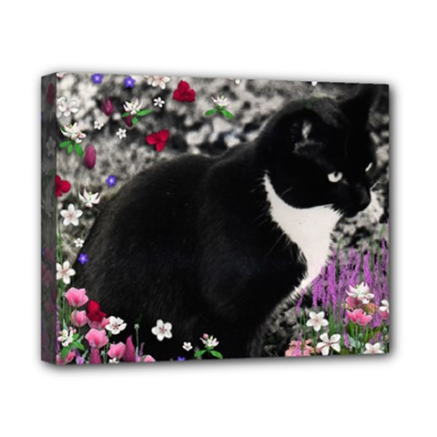 Freckles In Flowers Ii, Black White Tux Cat Canvas 10  X 8  by DianeClancy
