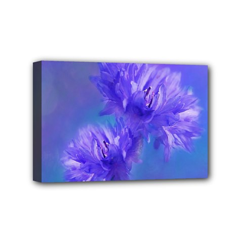 Flowers Cornflower Floral Chic Stylish Purple  Mini Canvas 6  X 4  by yoursparklingshop