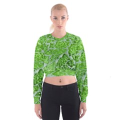 Festive Chic Green Glitter Shiny Glamour Sparkles Women s Cropped Sweatshirt by yoursparklingshop