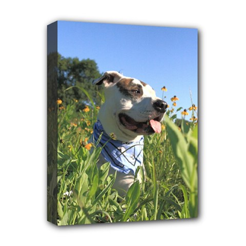 Pit Bull T Bone Deluxe Canvas 16  X 12   by ButThePitBull
