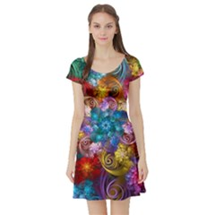 Spirals And Curlicues Short Sleeve Skater Dress by WolfepawFractals