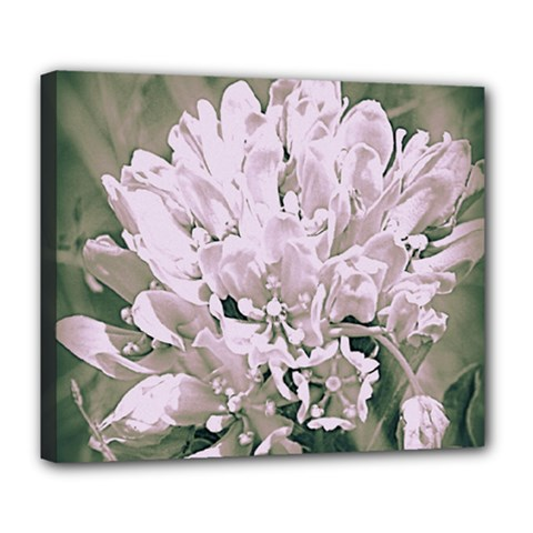 White Flower Deluxe Canvas 24  X 20   by uniquedesignsbycassie