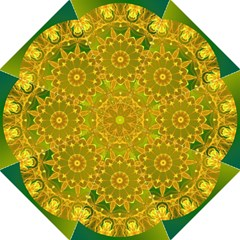 Yellow Green Abstract Wheel Of Fire Folding Umbrellas