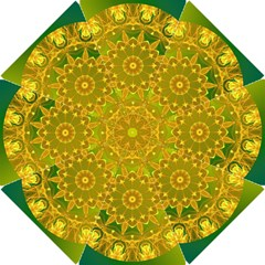 Yellow Green Abstract Wheel Of Fire Hook Handle Umbrellas (small)