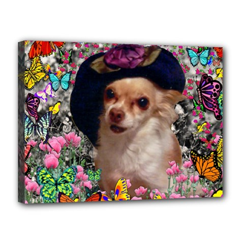 Chi Chi In Butterflies, Chihuahua Dog In Cute Hat Canvas 16  X 12  by DianeClancy