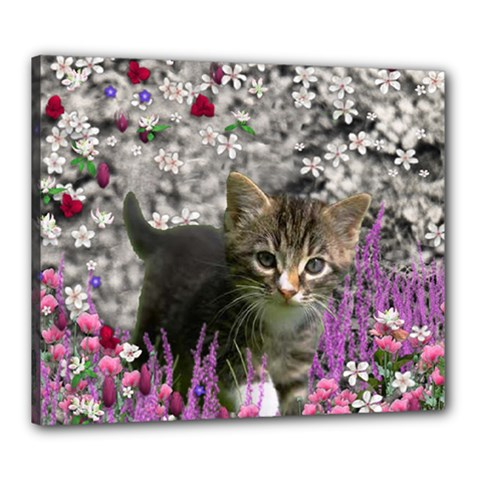 Emma In Flowers I, Little Gray Tabby Kitty Cat Canvas 24  X 20  by DianeClancy