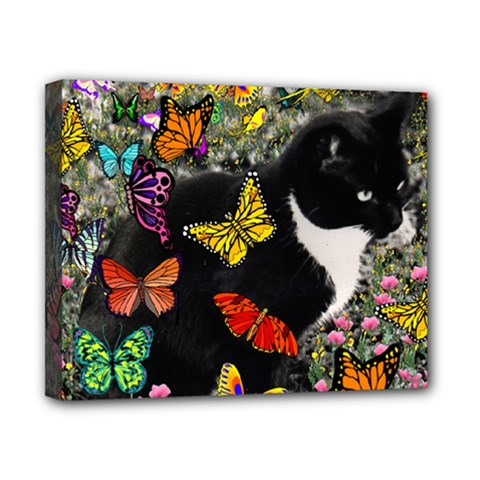Freckles In Butterflies I, Black White Tux Cat Canvas 10  X 8  by DianeClancy