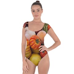 Heirloom Tomatoes Short Sleeve Leotard (ladies) by MichaelMoriartyPhotography