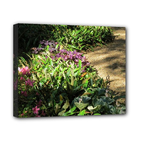Shadowed Ground Cover Canvas 10  X 8  by ArtsFolly
