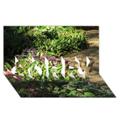 Shadowed Ground Cover Sorry 3d Greeting Card (8x4)  by ArtsFolly