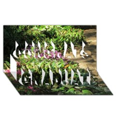 Shadowed Ground Cover Congrats Graduate 3d Greeting Card (8x4)  by ArtsFolly