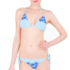 Elegant2 Bikini Set by olgart