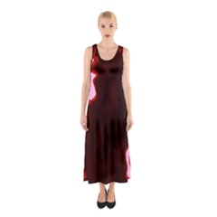 Crimson Sky Sleeveless Maxi Dress by TRENDYcouture