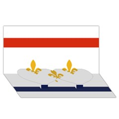 Flag Of New Orleans  Twin Heart Bottom 3d Greeting Card (8x4) by abbeyz71
