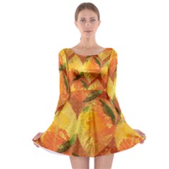 Fall Colors Leaves Pattern Long Sleeve Skater Dress by DanaeStudio