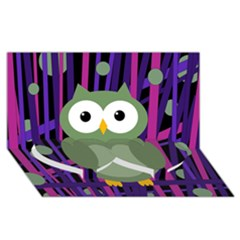 Green And Purple Owl Twin Heart Bottom 3d Greeting Card (8x4) by Valentinaart