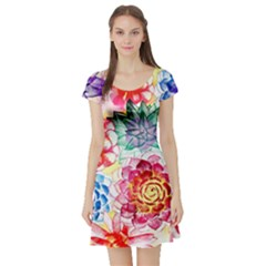 Colorful Succulents Short Sleeve Skater Dress
