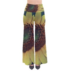 Sunflower Photography  Pants by vanessagf