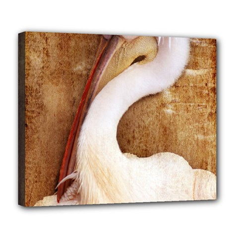 920 Pelican Deluxe Canvas 24  X 20   by PimpinellaArt
