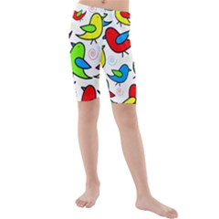 Colorful Cute Birds Pattern Kid s Mid Length Swim Shorts by Valentinaart