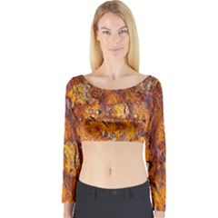 Rusted Metal Surface Long Sleeve Crop Top by igorsin