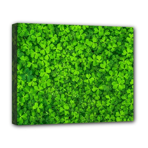 Shamrock Clovers Green Irish St  Patrick Ireland Good Luck Symbol 8000 Sv Deluxe Canvas 20  X 16