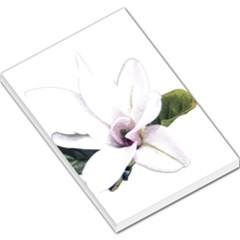 White Magnolia Pencil Drawing Art Large Memo Pads by picsaspassion