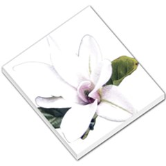 White Magnolia Pencil Drawing Art Small Memo Pads by picsaspassion