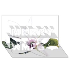 White Magnolia Pencil Drawing Art Merry Xmas 3d Greeting Card (8x4) by picsaspassion