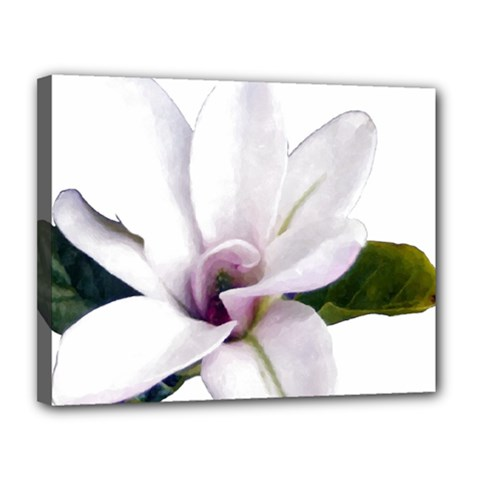 Magnolia Wit Aquarel Painting Art Canvas 14  X 11  by picsaspassion