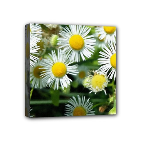 White Summer Flowers Oil Painting Art Mini Canvas 4  X 4