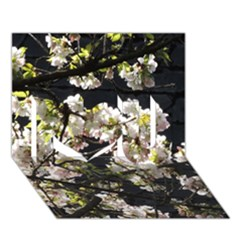 Japanese Cherry Blossom I Love You 3d Greeting Card (7x5) by picsaspassion