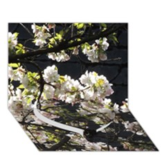 Japanese Cherry Blossom Heart Bottom 3d Greeting Card (7x5)
