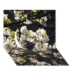 Japanese Cherry Blossom Circle 3d Greeting Card (7x5) by picsaspassion