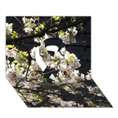 Japanese Cherry Blossom Ribbon 3d Greeting Card (7x5) by picsaspassion