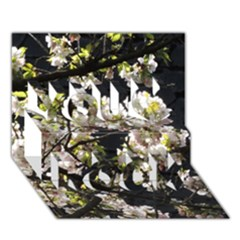 Japanese Cherry Blossom You Rock 3d Greeting Card (7x5) by picsaspassion