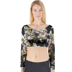 Japanese Cherry Blossom Long Sleeve Crop Top by picsaspassion