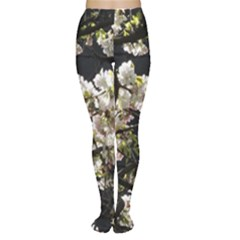 Japanese Cherry Blossom Women s Tights by picsaspassion