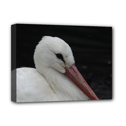 Wild Stork Bird Deluxe Canvas 16  X 12   by picsaspassion