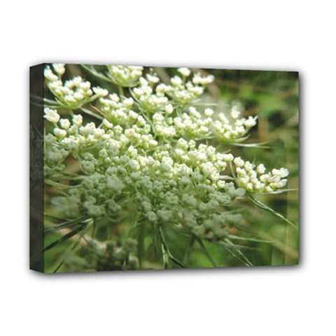 White Summer Flowers Deluxe Canvas 16  X 12   by picsaspassion