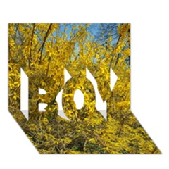 Nature, Yellow Orange Tree Photography Boy 3d Greeting Card (7x5)