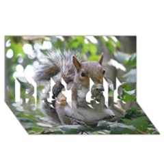 Gray Squirrel Eating Sycamore Seed Best Sis 3d Greeting Card (8x4)