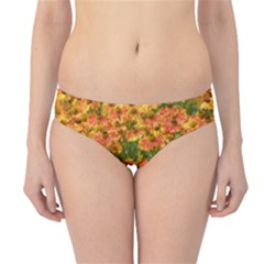 Helenium Flowers And Bees Hipster Bikini Bottoms
