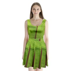 Ensete Leaf Split Back Mini Dress  by picsaspassion