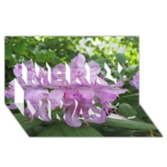 Purple Rhododendron Flower Merry Xmas 3d Greeting Card (8x4) by picsaspassion