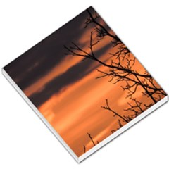 Tree Branches And Sunset Small Memo Pads by picsaspassion