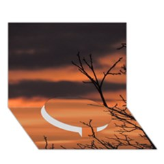 Tree Branches And Sunset Circle Bottom 3d Greeting Card (7x5) by picsaspassion