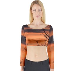 Tree Branches And Sunset Long Sleeve Crop Top by picsaspassion