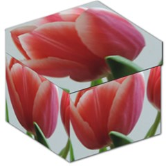 Red   White Tulip Flower Storage Stool 12   by picsaspassion